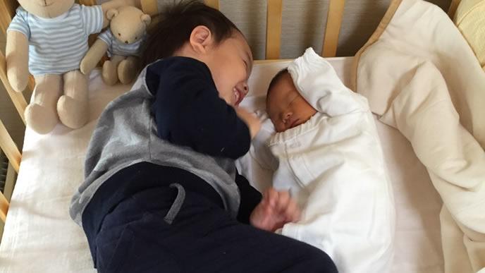 新生児の弟の面倒を見る優しいお兄ちゃん