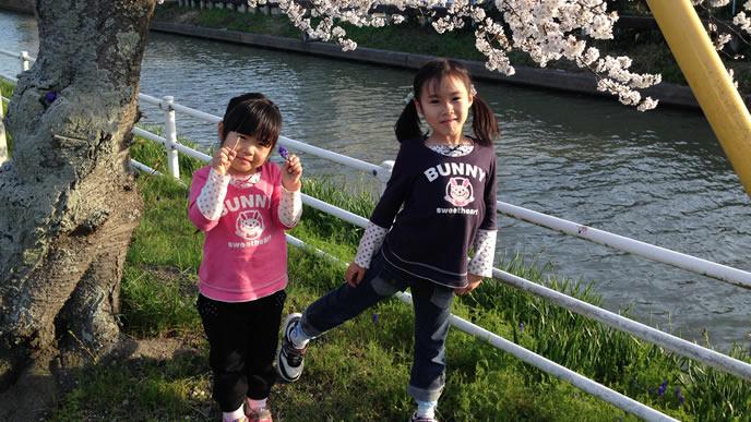 桜の下で可愛くポーズを取る姉妹