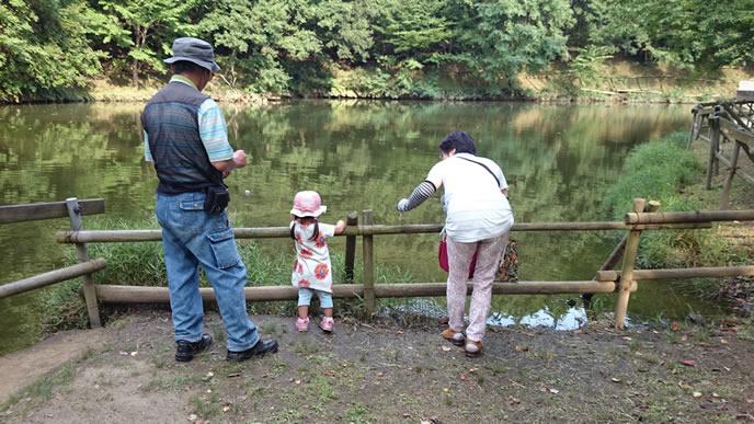 公園の湖を眺める女の子