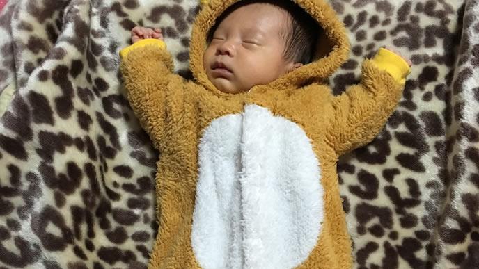 着ぐるみでバンザイをする赤ちゃん