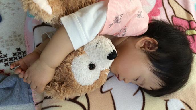 大好きなクマさんと添い寝する赤ちゃん