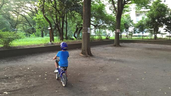 自転車で走り回る活発な子