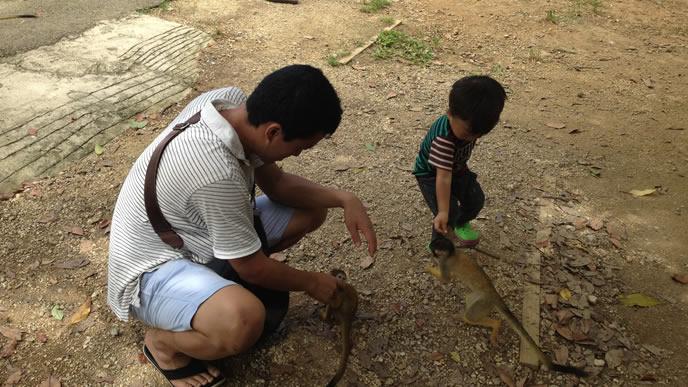 サルと戯れる小学生とパパ