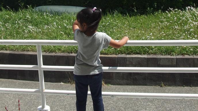 道路脇で何かを見つけた女の子