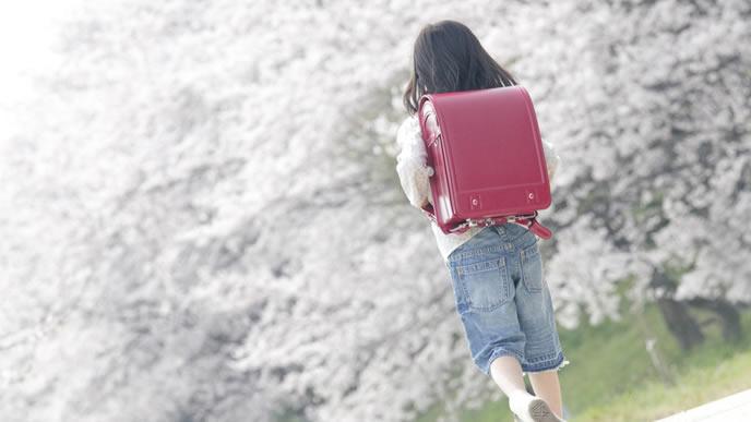 桜並木道を通学する女の子