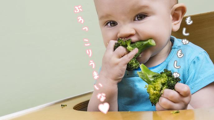 ブロッコリーをもしゃもしゃ食べる赤ちゃん