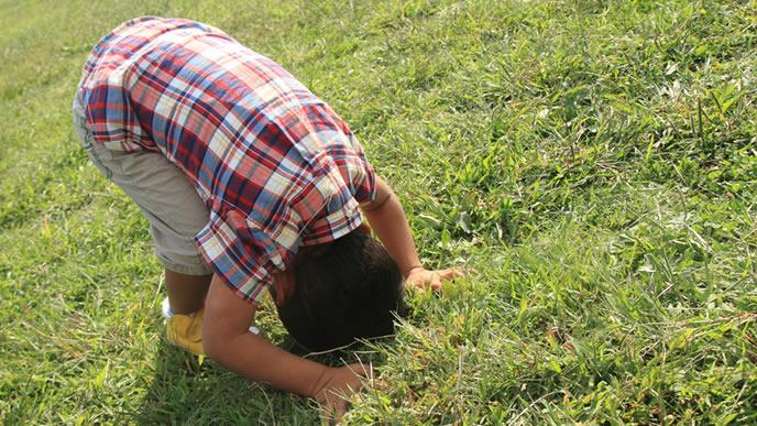 芝生の上で前転の練習をする男の子