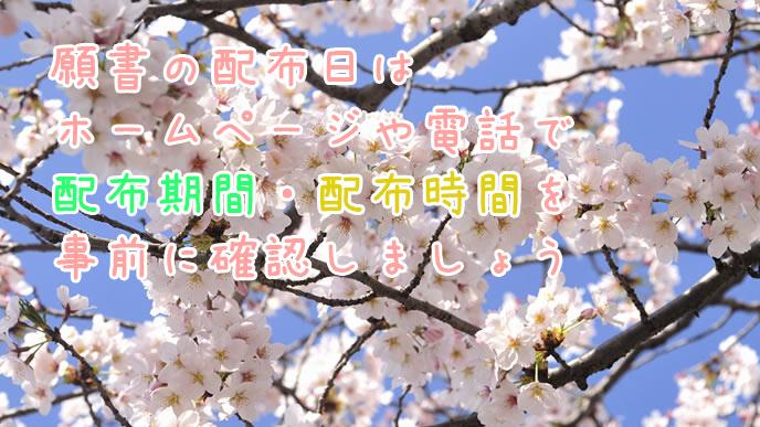 春に咲くサクラの木