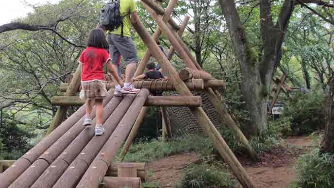 アスレチックパークで遊ぶ子供と親