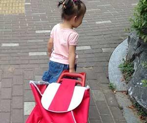 2歳児がキャリーバッグを引いて歩く