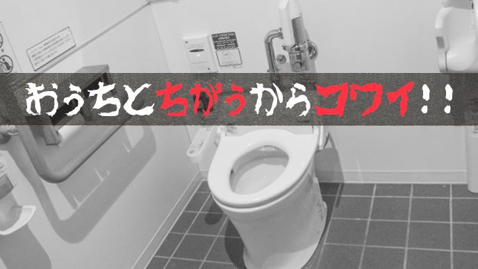 外のトイレは見慣れないのでコワイ