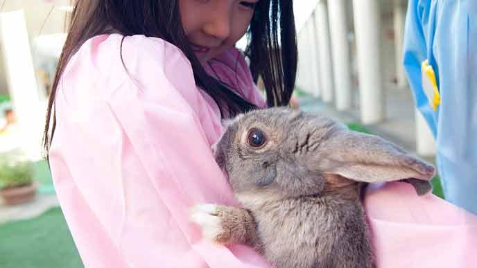 ウサギを抱く幼稚園児