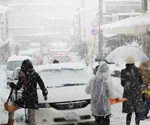 積雪で渋滞する道路