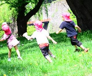 夏の公園で駆け回る園児たち