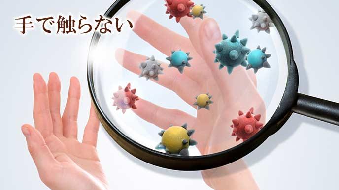 手についたばい菌