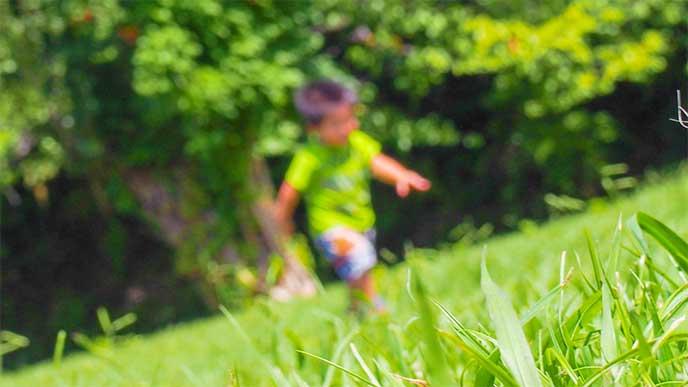 公園を走って遊んでる赤ちゃん