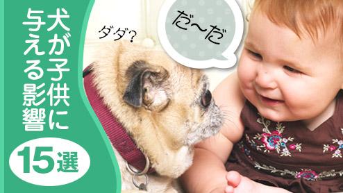 犬と子供はいつも仲良し!家族に迎えてよかったこと15選!