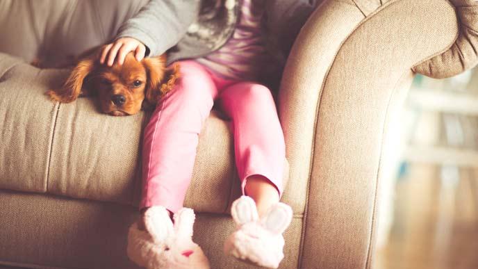 ソファーに座る犬と子供