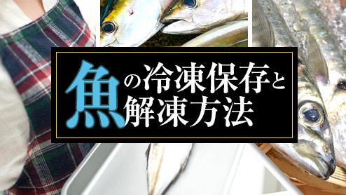 魚を冷凍保存しておいしく食べる!味を損なわない冷凍方法