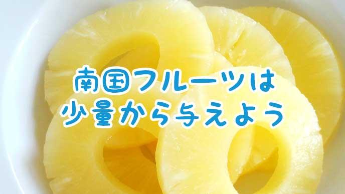 輪切りにされたパイナップル