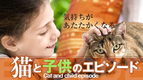 猫と子供の仲良しエピソード!気持ちがあたたかくなる体験談15