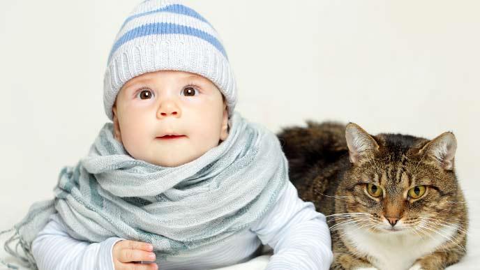 仲良く並んでいる子供と猫