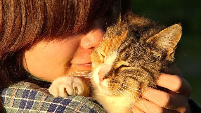 猫を抱きかかえている少年