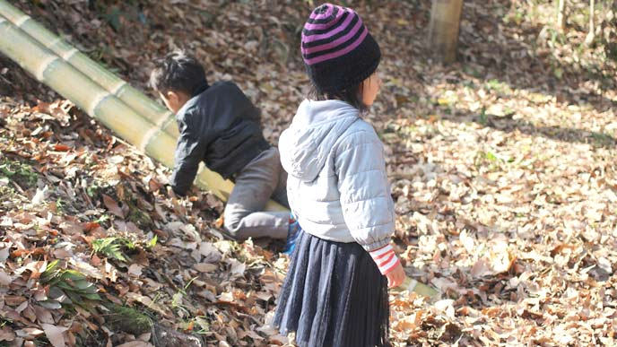 公園で遊ぶ姉と弟の姉弟