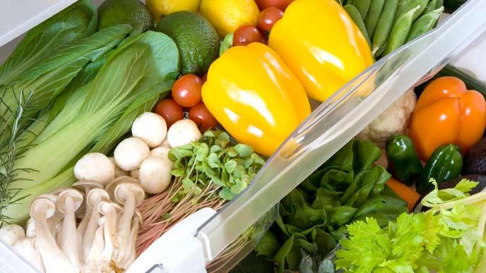 冷凍庫の中に並べてある野菜