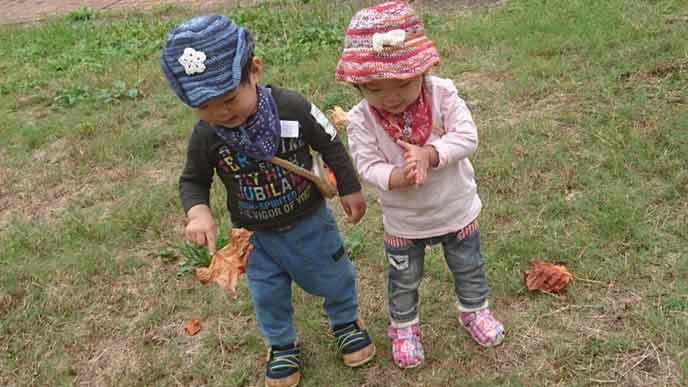 公園の芝生の上で落ち葉を拾う2歳児