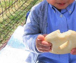 レジャーシートに座ってパンを食べる幼児