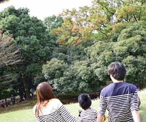 家族で公園に出かける