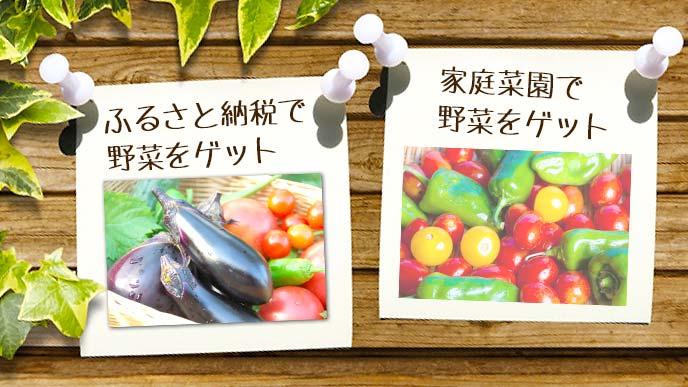 ふるさと納税と家庭菜園で野菜をゲット