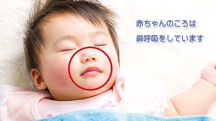 赤ちゃんのころは鼻呼吸をしています