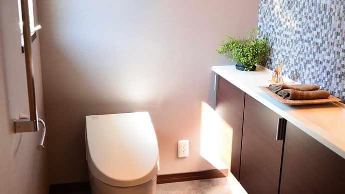 トイレに置かれた観葉植物
