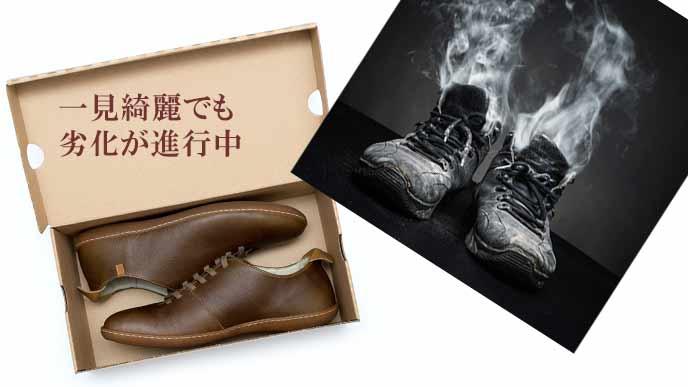 靴箱の中で劣化する靴