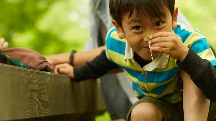 キャンプ場で何かを見つけて目を輝かす子供