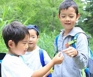 昆虫採取をする子供達