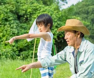 おじいちゃんと虫取りする子供
