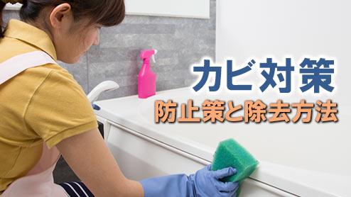 カビ対策をしよう!部屋・窓・風呂に生やさない防止策と除去方法